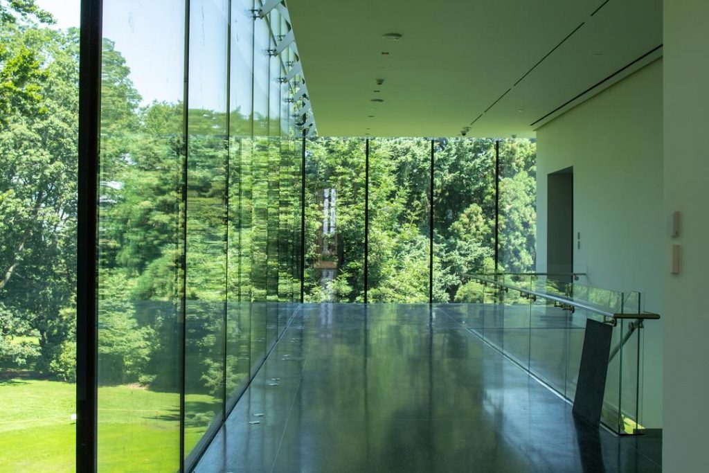view of the park lobby with glass walls overlooking the trees in Volunteer Park